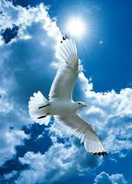 NON DOMANI, MA ADESSO: una preghiera dello Spirito Santo per coloro che rimandano sempre a domani.